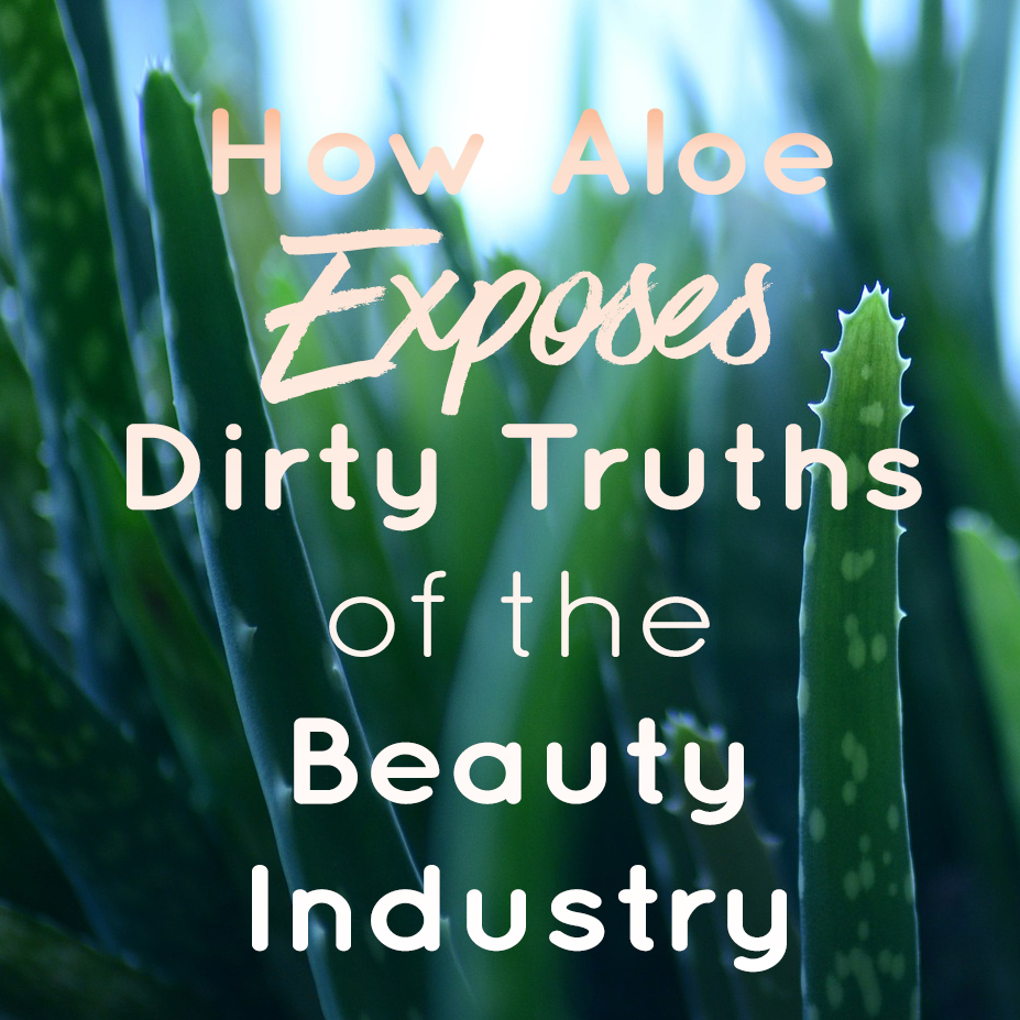 How Aloe Exposes Truths of the Beauty Industry